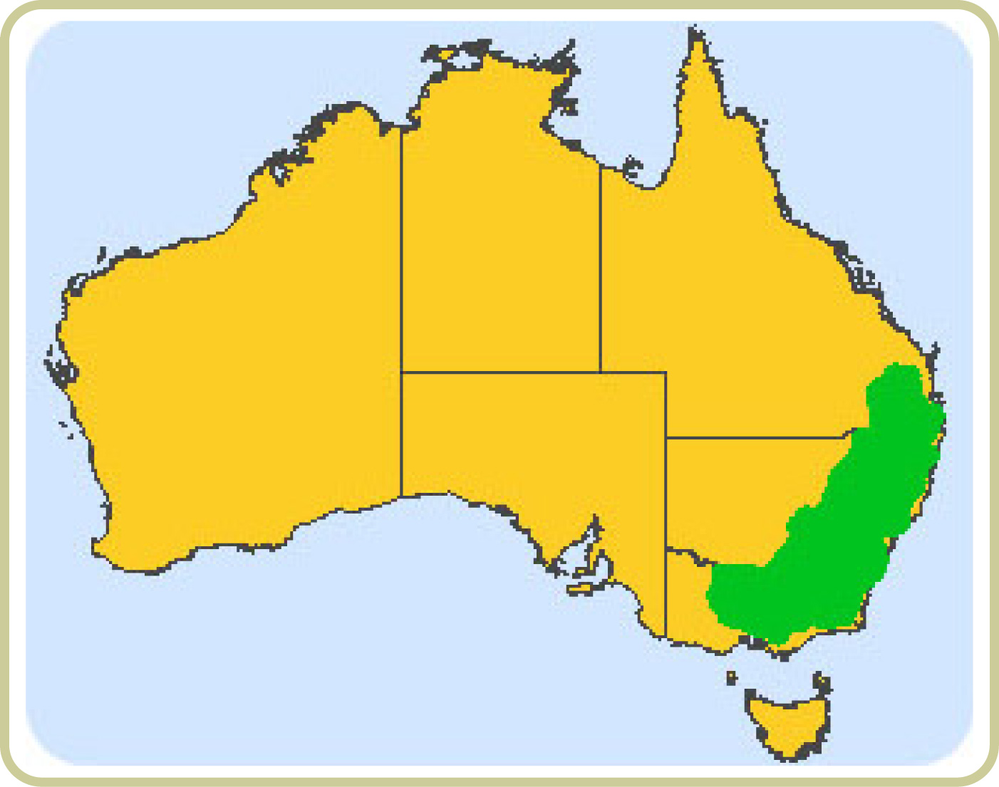 Distribution map of Yellow box-Blakely's red gum grassy woodlands