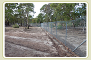Feral fence at sanctuary
